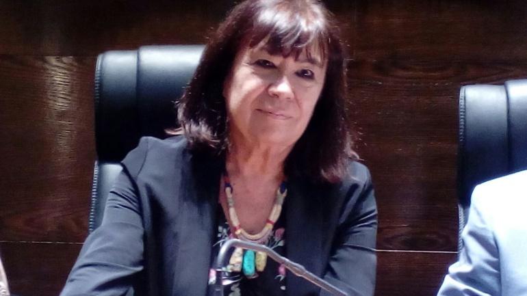 Cristina Narbona antes de comenzar su conferencia en el Colegio de Abogados de Zaragoza
