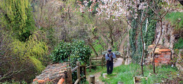 Camino del Postigo, a orillas del río Tinte, en Cañete.