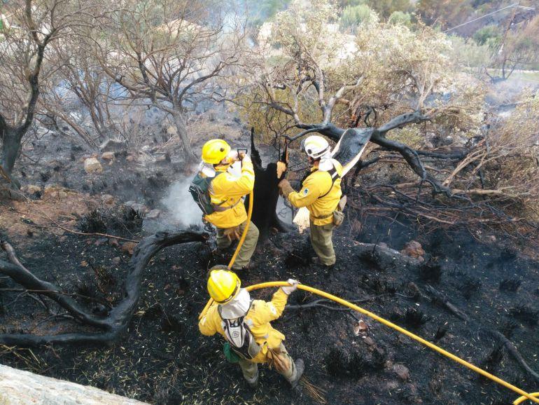 Balears ha registrado un total de 41 incendios en lo que va de año
