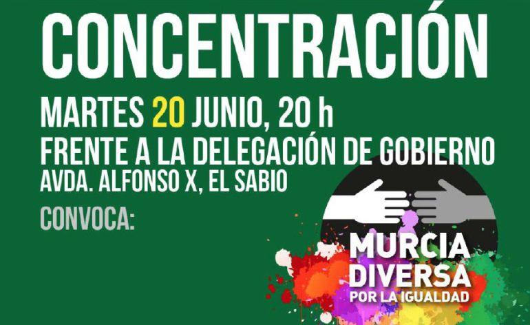 """Sánchez-Solís considera """"adecuadas"""" las medidas de seguridad seguidas en el desfile del Orgullo LGBTI"""