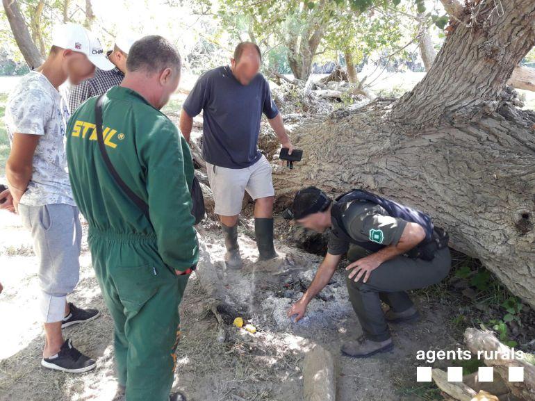 Una imatge de la intervenció dels Agents Rurals a l'illa de Vinallop.