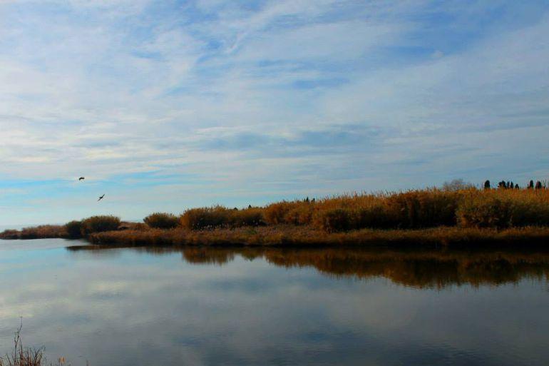 La Desembocadura del Río Mijares es un paisaje protegido desconocido para muchos vecinos