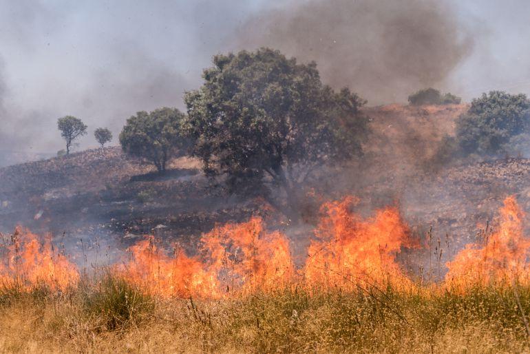 El fuego arrasa más de 500 hectáreas entre la barriada de Llera y Las Vaguadas