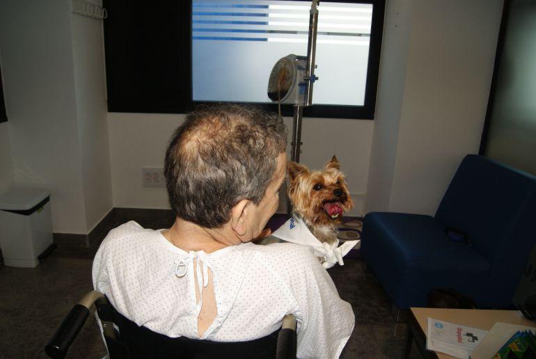 León visitando a su dueño en Can Misses