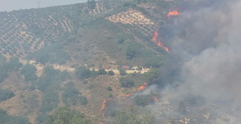 Incendio de Villanueva del Arzobispo.