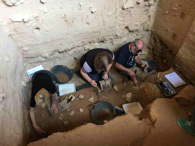 Localizan huesos de bisonte y rinoceronte en la Cueva Negra