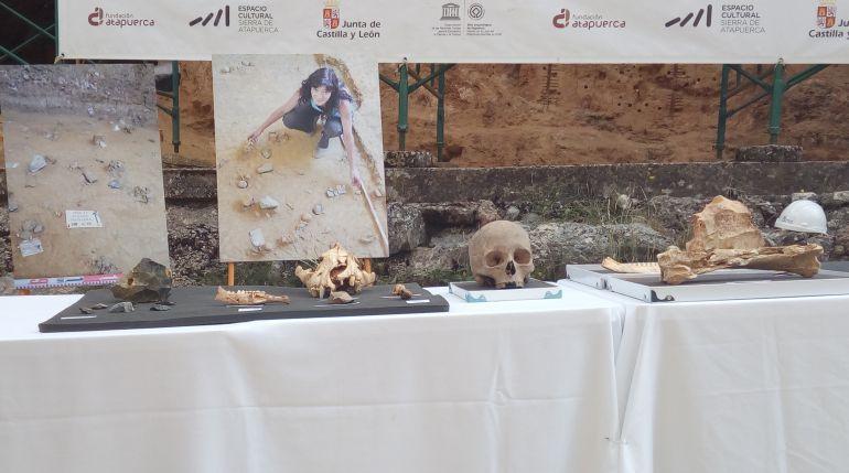 Excavaciones Atapuerca: Atapuerca completa la secuencia de la evolución humana en Europa