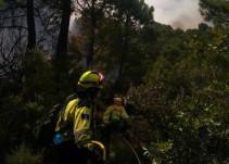 El incendio de Yeste podría ser provocado