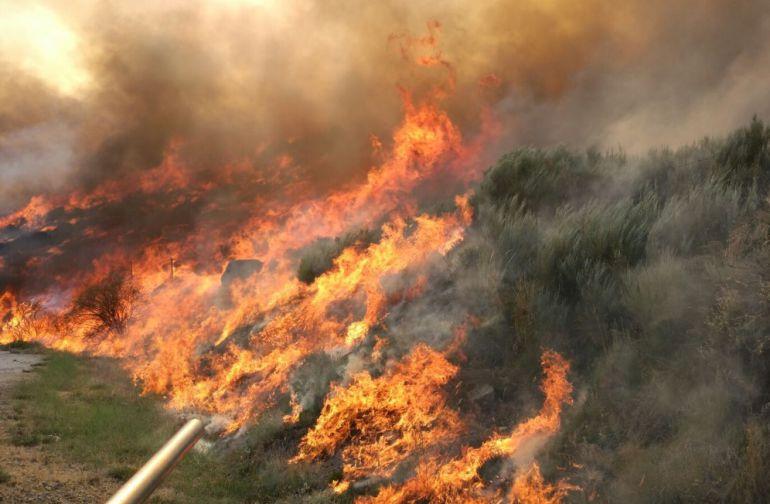 Imagen del incendio declarado en Navarredonda de Gredos este 7 de agosto