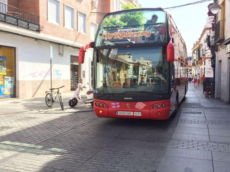 Autobús turístico por El Realejo