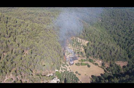 """El incendio de Segura fue provocado con piras """"de papel higiénico"""""""