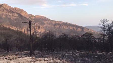 Junto a los focos que originaron el incendio de Segura se encontraron objetos que podrían delatar al autor