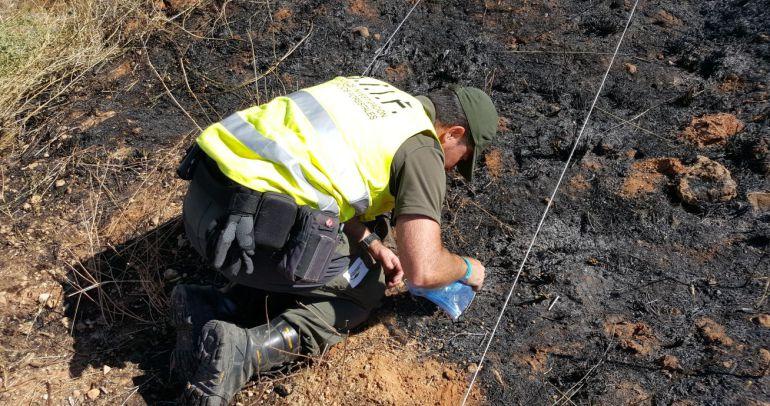 El trabajao de investigación de los agentes medioambientales de las BIIF es minucioso.
