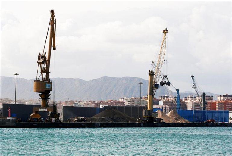 Imagen de la actividad en el puerto de Alicante