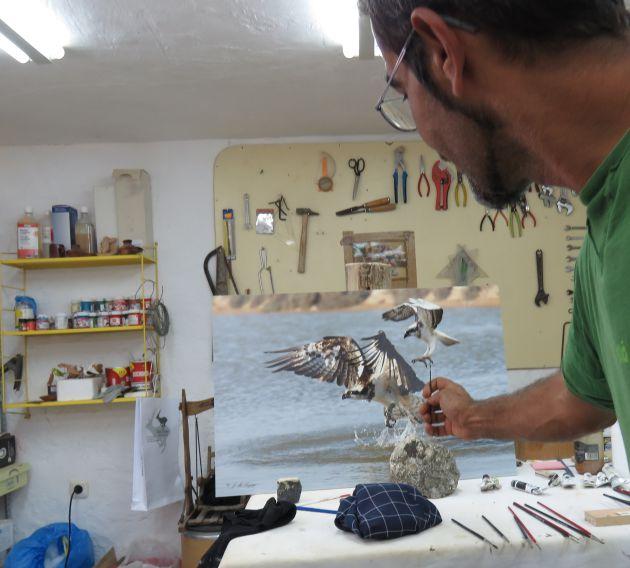Toni en el taller comparando el ejemplar de ágila pescadora de la foto de Sayago con la miniatura en la que están trabajando