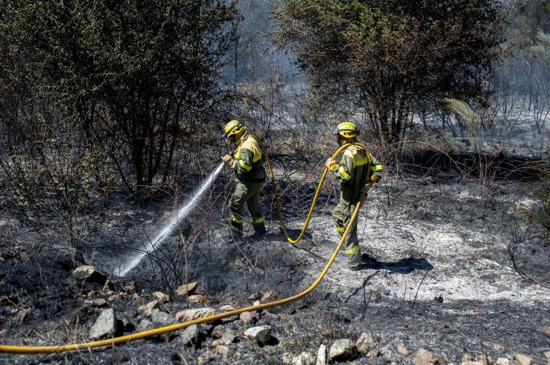 Brigadistas realizan labores de extinción en el incendio forestal declarado a en la localidad orensana de Maside