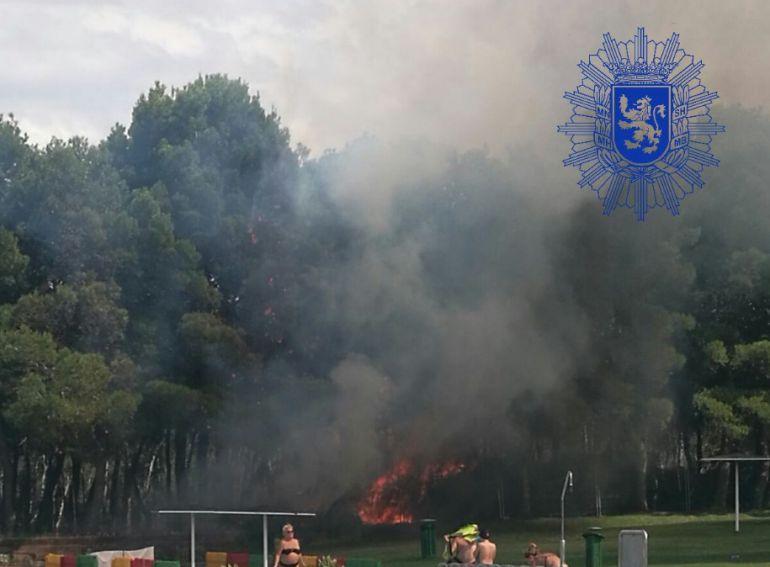 Incendio registrado este 15 de agosto en el pinar junto a las piscinas de Torrero