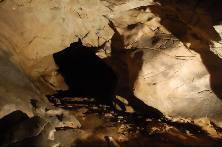 Una imagen del interior de Cova Eirós