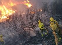 Estabilizados los tres incendios que afectan a la provincia de Sevilla