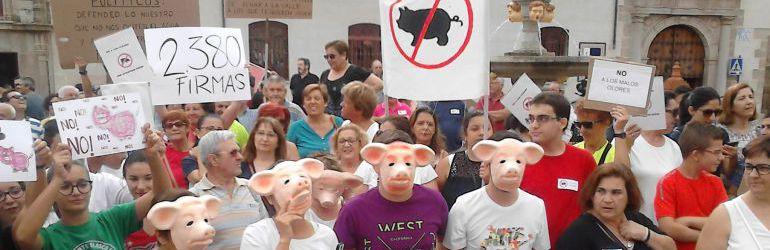 Concentración de Vecinos de Gamonal en contra de las macrogranjas
