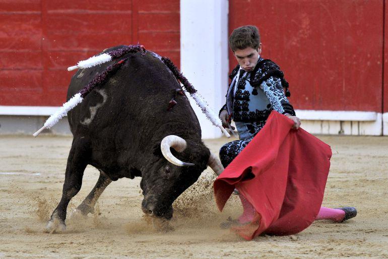 El diestro Ginés Marín, que cortó una oreja, da un pase con la muleta a uno de los de su lote durante la corrida de la feria de la Virgen de los Llanos celebrada esta tarde en la plaza de toros de Albacete.