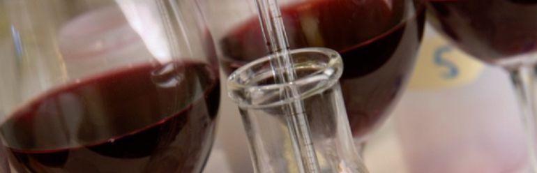 Piden identificar a las bodegas denunciadas por fraude en la elaboración de vinos