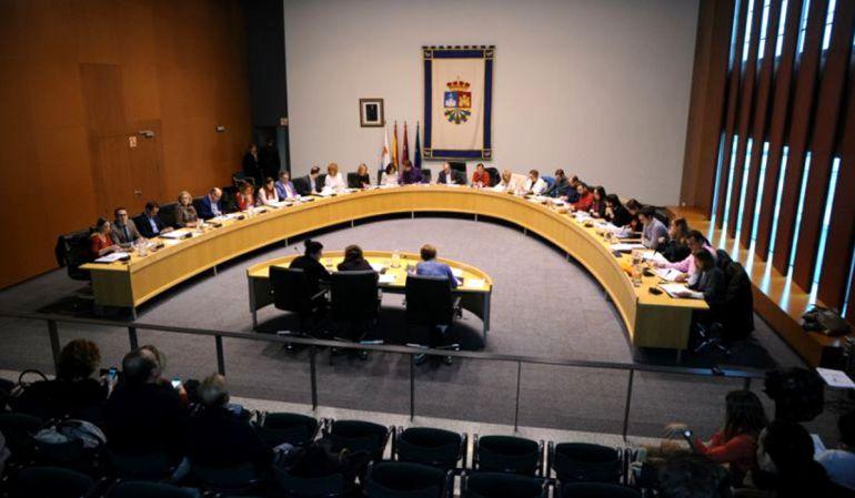 El Pleno ha dado su apoyo unánime a la propuesta