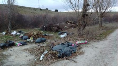 Vertido ilegal de basuras en parcela municipal al lado de la Normon.