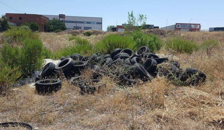 Imágen de unos neumáticos abandonados.