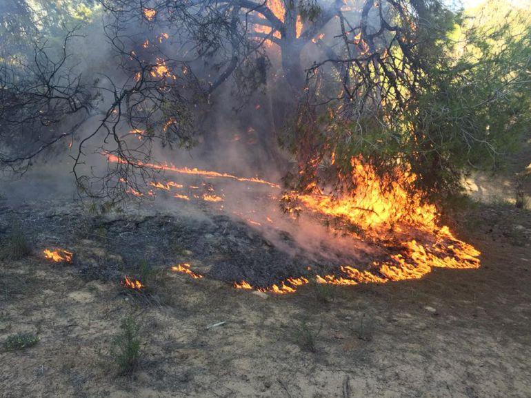 Incendio Pinada Guardamar