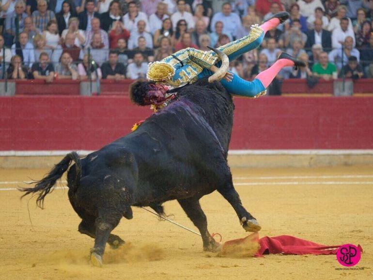 Cogida de Cayetano en el Coso de la Misericordia, en la Feria del Pilar de Zaragoza