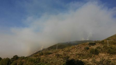 Un incendio en Matalavilla amenaza la zona osera de Palacios del Sil