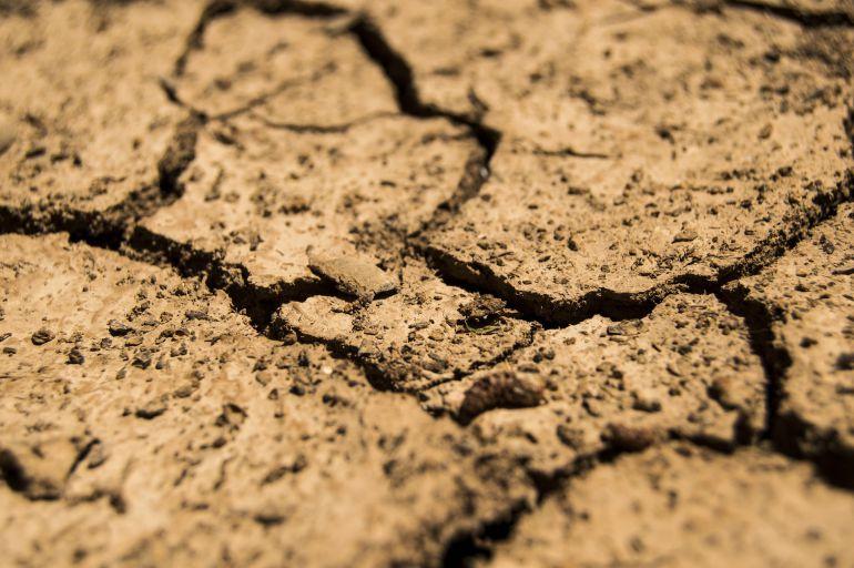 El sector agrario reclama ayudas directas