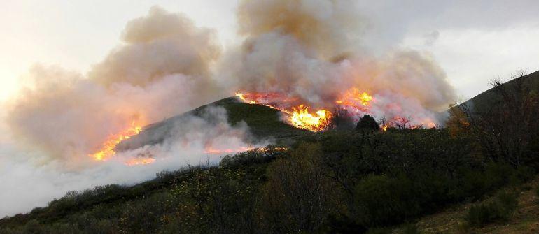 Los incendios en el suroccidente asturiano han dejado al ganado sin pastos