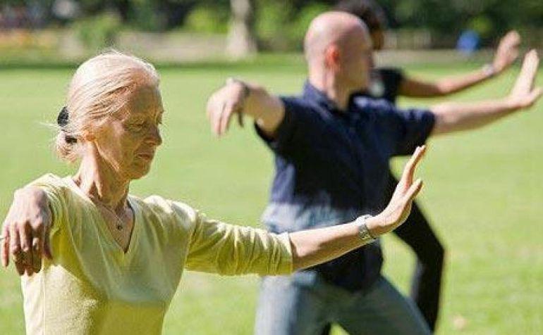 ¿Qué diferencia una formación militar de una formación de ancianos practicando tai chi?
