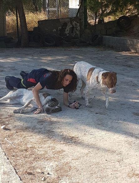 Una bombero en plena sesión fotografica con los perros del refugio