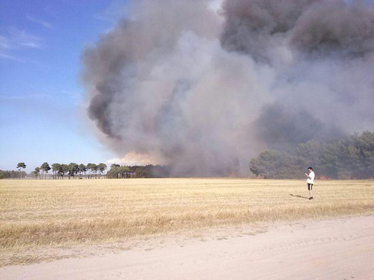 Incendio en la Tierra de Pinares hace unos años