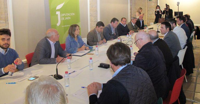 Miembros del Consejo Provincial del Aceite de Oliva reunidos en la Diputación.