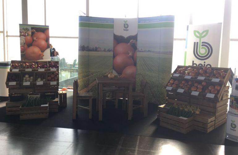 Uno de los stands de cebollas que se han colocado para mostrar el producto