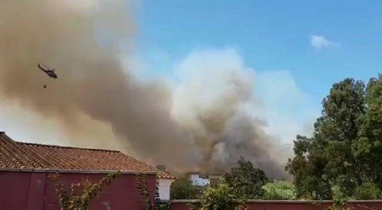Incendio en la zona sur de Algeciras, durante este pasado verano