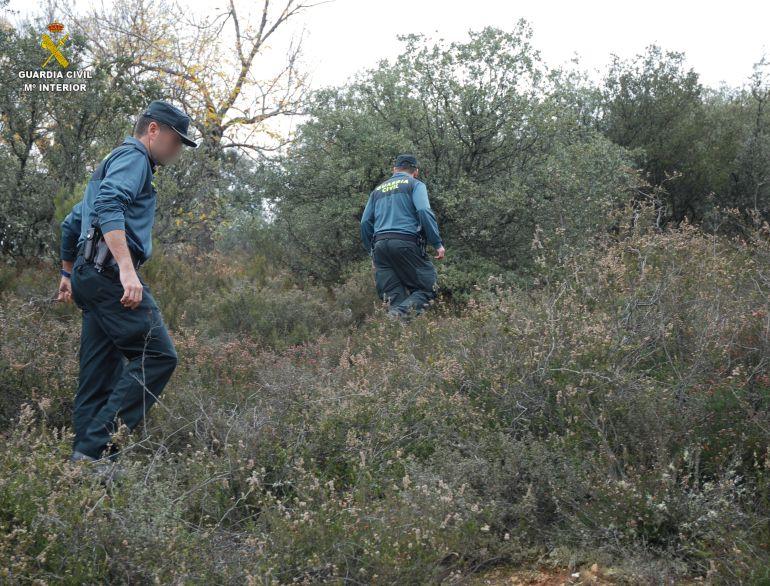 Imagen de la búsqueda