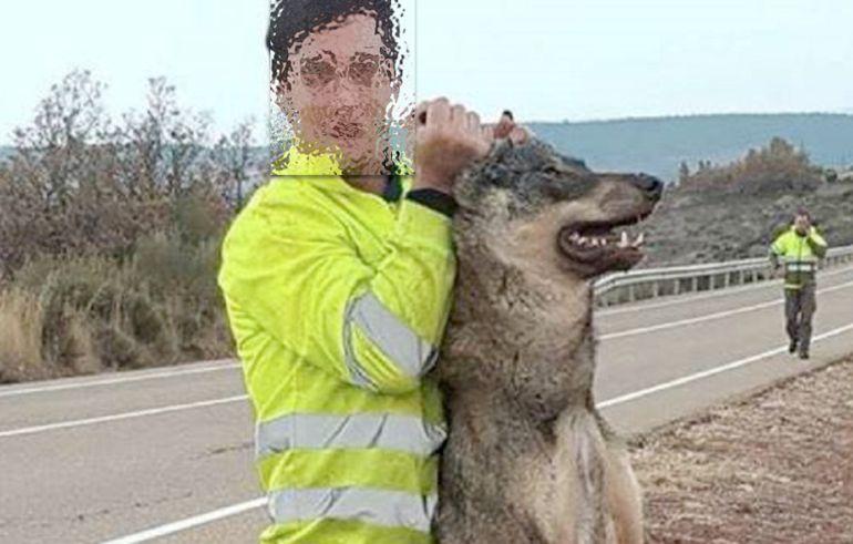 Imagen de la polémica difundida en redes sociales en la que un trabajador público de Palencia posa con un lobo atropellado