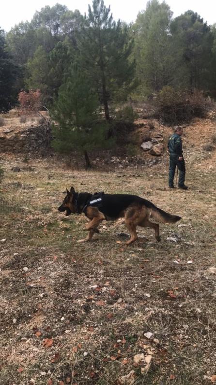 Los perros del servicio cinológico de la Guardia Civil han estado todo el día rastreando las inmediaciones del pantano