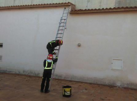 Momento en que los bomberos resatan un gato en Cazora