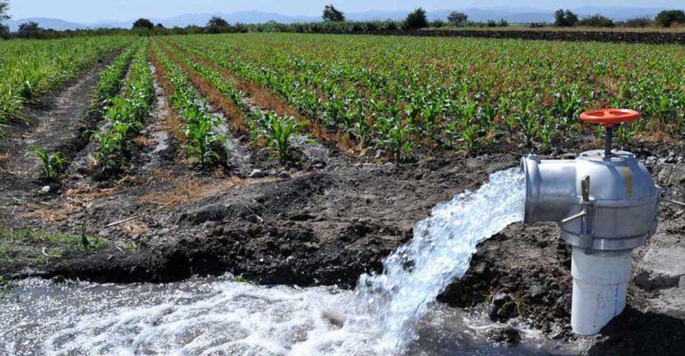 Esta recién creada asociación de regantes pide un plan hídrico que asegure los cultivos de la zona