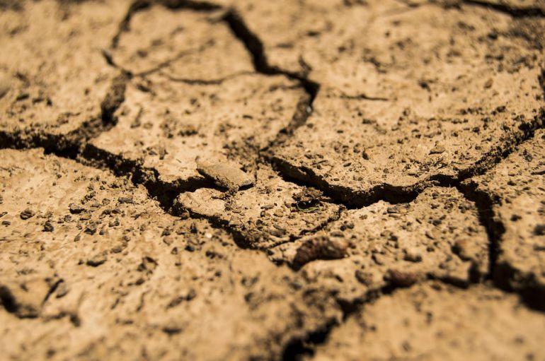 El año 2017 ha sido el más seco de los últimos 25 años en Aranda de Duero