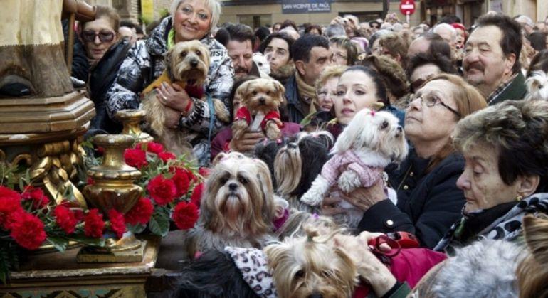 Sax adelanta la celebración de San Antón a este domingo