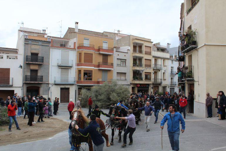 La provincia ha celebrado este fin de semana los festejos en honor a Sant Antoni