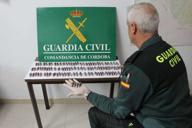 Material incautado en la operación de la Guardia Civil