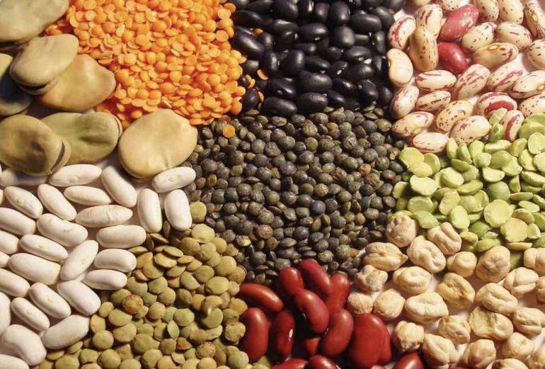 El sector de las legumbres se abre paso en la comarca de La Mancha